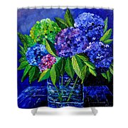 Hydrangeas 88 Shower Curtain