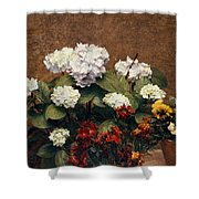 Hydrangeas And Wallflowers And Two Pots Of Pansies Shower Curtain
