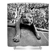 Hyena On The Wall Shower Curtain