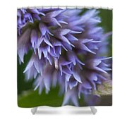 Hyssop Blue Shower Curtain