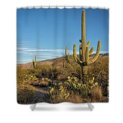 I Am The Tallest Saguaro Shower Curtain
