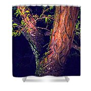 I Am Tree Shower Curtain