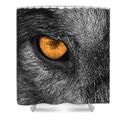 I Am Wolf Shower Curtain