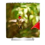 I Can Fly Shower Curtain