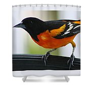I Can See You Shower Curtain