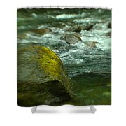 I Dreamed Of The River Shower Curtain