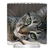 I Get Lost In Your Eyes Shower Curtain