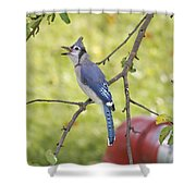 I Have Something To Say Shower Curtain