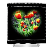 I Heart Tulips - Black Background Shower Curtain