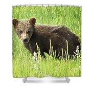 I Love Me A Teddy Bear Shower Curtain by Belinda Greb