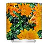 I Love Orange Flowers Shower Curtain