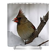 I Love Seeds Shower Curtain