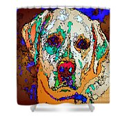 I Love You. Pet Series Shower Curtain