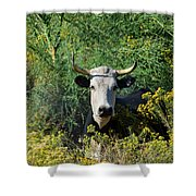 I Picked These For Moo Shower Curtain