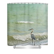 I Saw The Heron Standing Shower Curtain