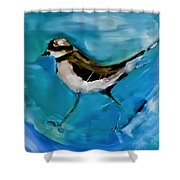 I See You Said The Killdeer As She Passed By Shower Curtain
