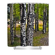 I See You - The Aspens Shower Curtain