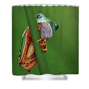 I See You - Tiger Leg Monkey Frog Shower Curtain