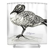 I Stand On The Brink Shower Curtain