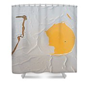 I Thought It Was A Fry, But It's A Pimply Egg Shower Curtain