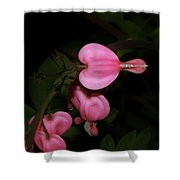 I Want To Bloom My Way Shower Curtain