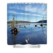 Iago Springs 9500 Shower Curtain