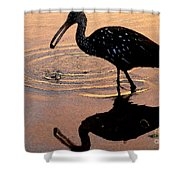 Ibis At Dusk Shower Curtain