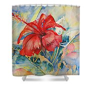 Ibiscus Shower Curtain
