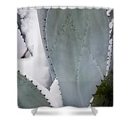 Ice Blue Agave Shower Curtain