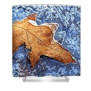 Ice-bound Leaf Shower Curtain