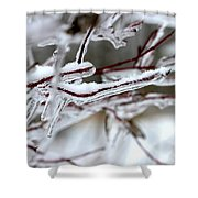 Ice Branches Shower Curtain