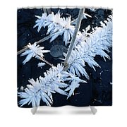 Ice Crystal Shower Curtain