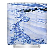 Ice Cube Creek Shower Curtain