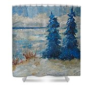 Ice On Lake Erie Shower Curtain