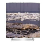 Ice On Lake Huron Shower Curtain