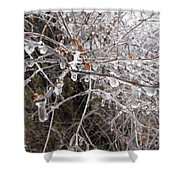 Ice Pearls Shower Curtain