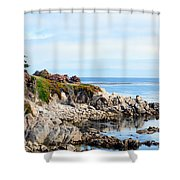 Ice Plant Along The Monterey Shore 2 Shower Curtain