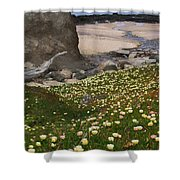 Ice Plants On Moss Beach Shower Curtain