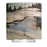 Ice Pond Shower Curtain