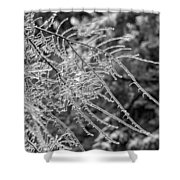 Ice Storm 2 - Bw Shower Curtain