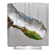 Ice Storm Buds Shower Curtain