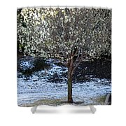 Ice Tree Shower Curtain