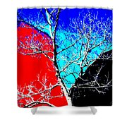 Ice Tree Shower Curtain by Eikoni Images