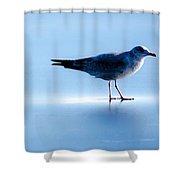 Ice Walk Shower Curtain