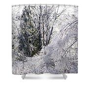 Ice Wonderland Shower Curtain