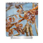 Iced Gold Shower Curtain