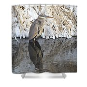Iced Heron Shower Curtain