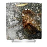 Iced Leaf Shower Curtain