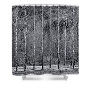 Iceland Landscape # 10 Shower Curtain