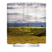 Icelandic Horses On The Countryside  Shower Curtain